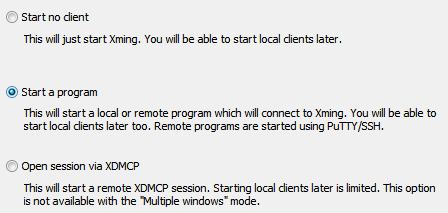 Xming Start a program